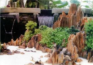 Non Bộ gỗ hóa thạch
