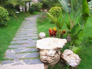 Sân Vườn Đẹp 22